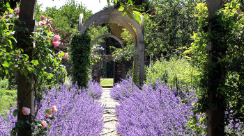 Garden Day for CLC Community 17/06/20